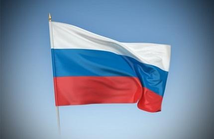 روسیه به خروج اتباع گرجستان از سوریه کمک می کند