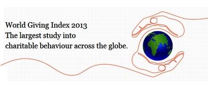 گزارش سال 2013 بنیاد حمایت از امور خیریه