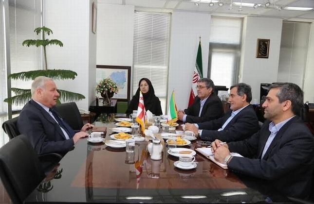 دیدار سفیر گرجستان و معاون وزیر راه ایران