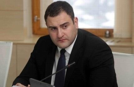 الکساندر چیکایدزه، وزیر کشور مستعفی گرجستان