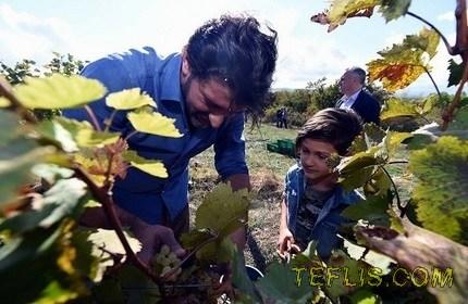 روز ملی ' شراب ' در گرجستان