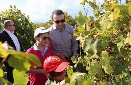 ایراکلی قریباشویلی، نخست وزیر گرجستان و فرزندانش در یکی از مزارع انگور در روز ملی ' شراب ' گرجستان