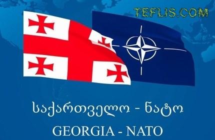 اختلاف نظر اعضای ' ناتو ' بر سر عضویت گرجستان
