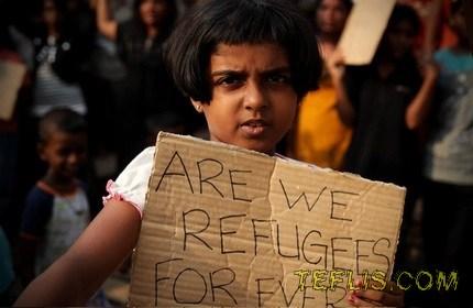 995 تبعه خارجی متقاضی پناهندگی در گرجستان