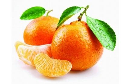 استرداد 107 تُن نارنگی به گرجستان توسط گمرک روسیه