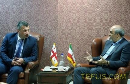 دیدار وزرای ورزش و امور جوانان گرجستان و ایران