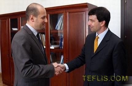 دیدار اولین سفیر اتریش در گرجستان با وزیر امور خارجه