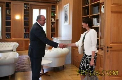 دیدار خداحافظی سفیر آلمان با رییس جمهور گرجستان